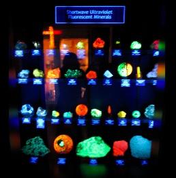 Colorado School of Mine Geology Museum 蛍光鉱石