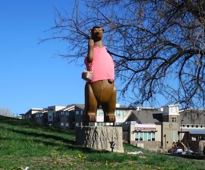 Louisville Bear