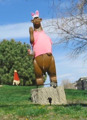 Louisville のクマ
